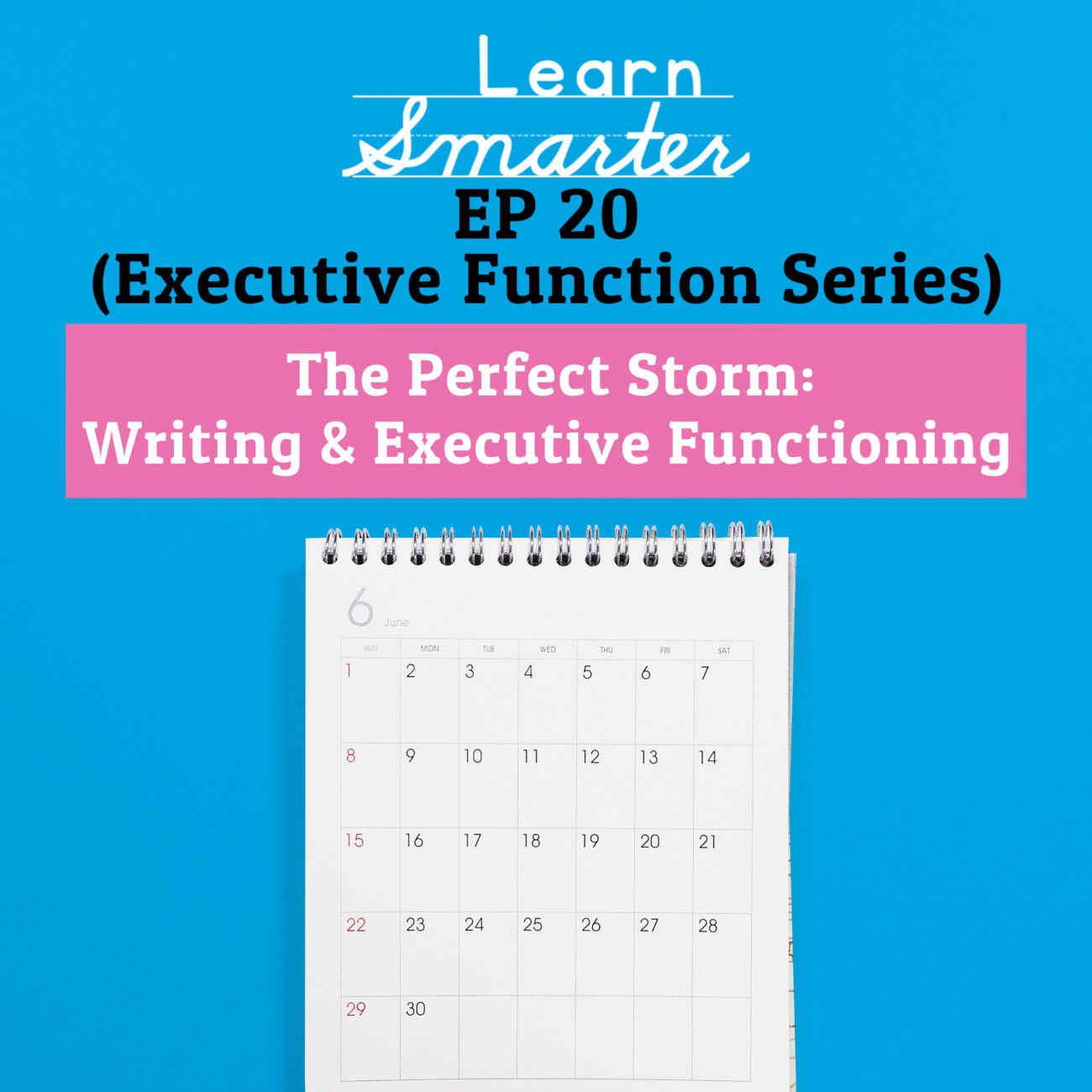 20: The Perfect Storm: Writing & Executive Functioning