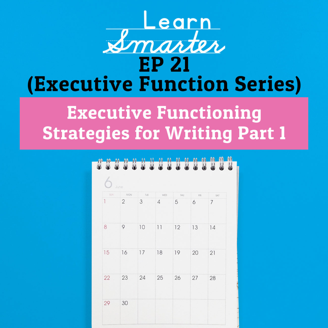 21: Executive Functioning Strategies for Writing Part 1