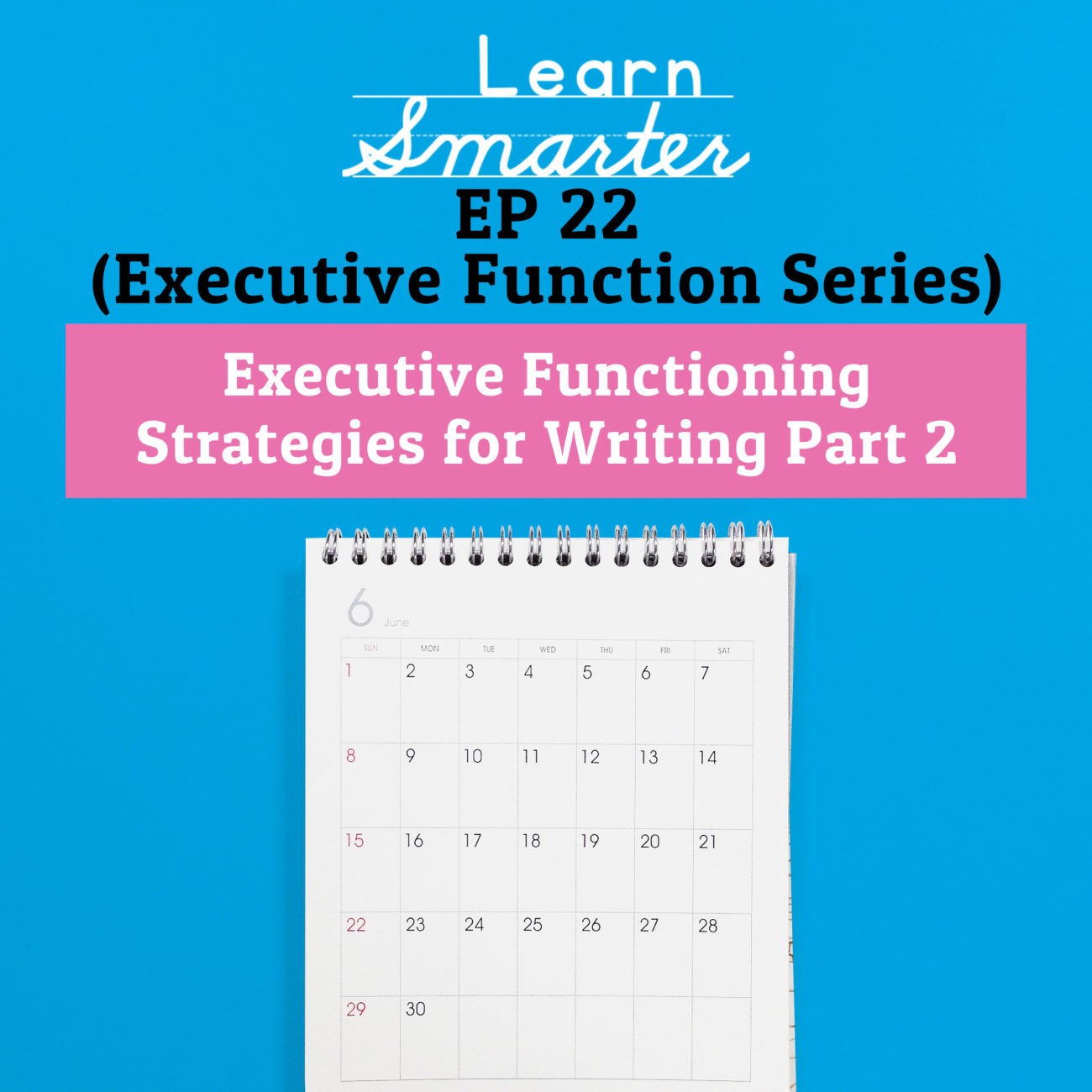 22: Executive Functioning Strategies for Writing Part 2