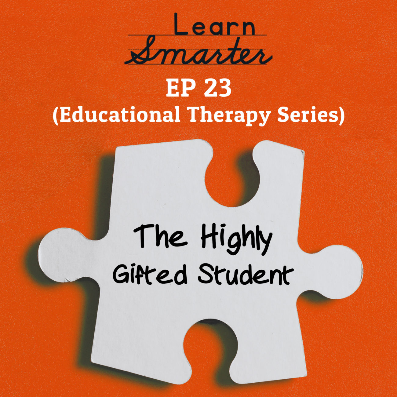 23: The Highly Gifted Student