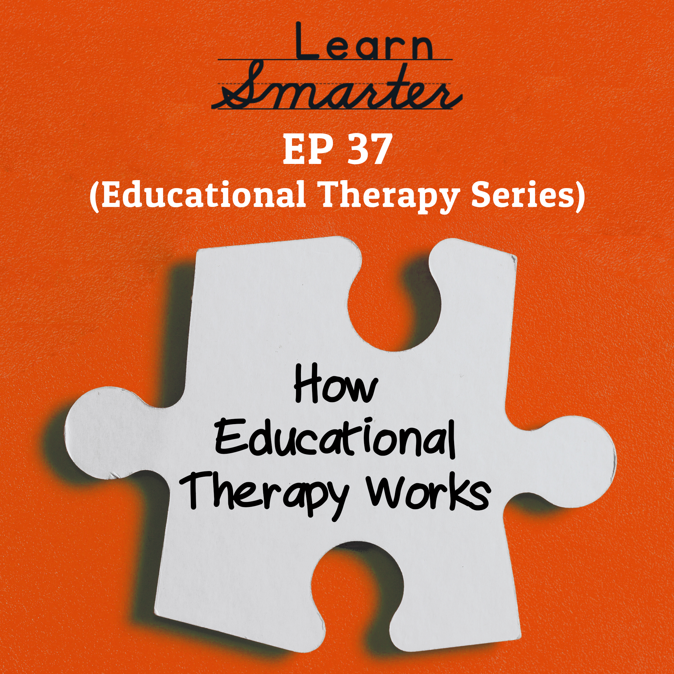 37: How Educational Therapy Works