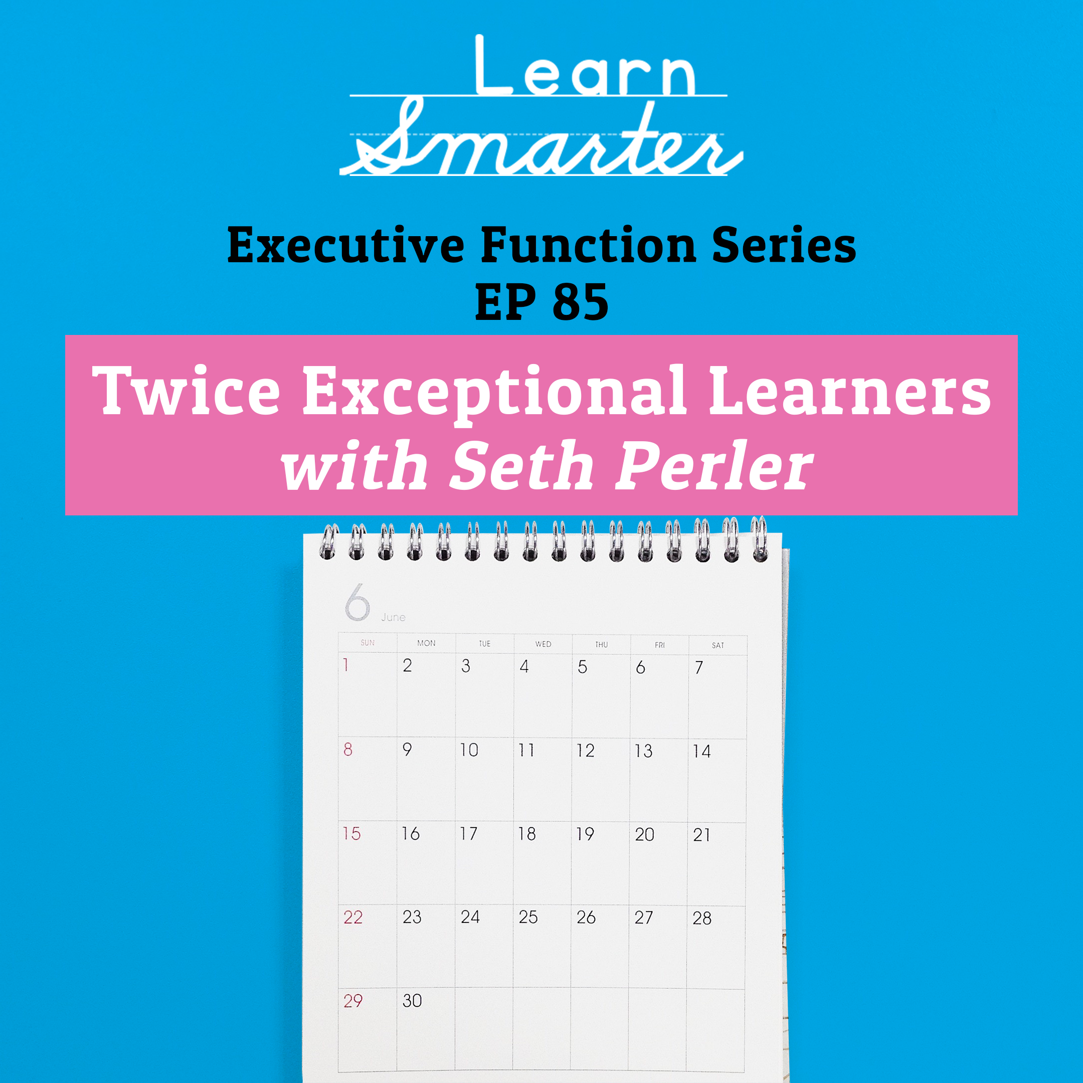 85: Twice Exceptional Learners with Seth Perler (Executive Function Series)