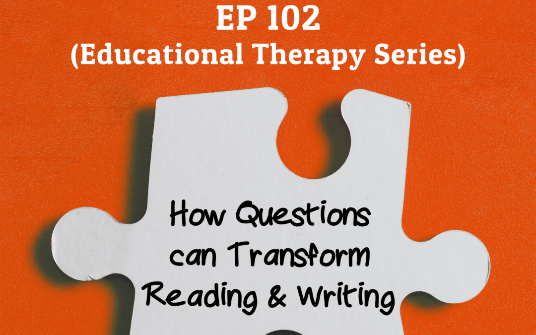 102: How Questions can Transform Reading & Writing (Educational Therapy Series)