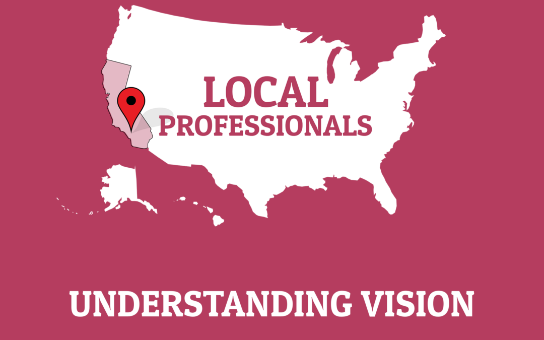127: Understanding Vision with Developmental Optometrist Dr. Elise Brisco (Local Professionals Series)