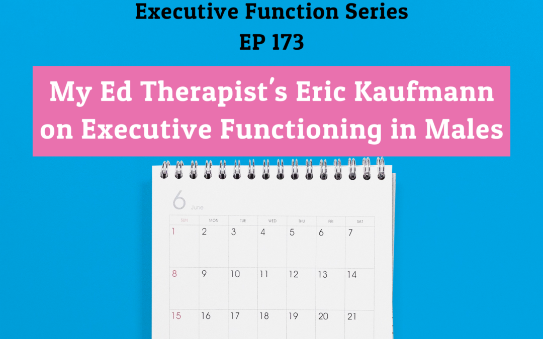 173: My Ed Therapist's Eric Kaufmann on Executive Functioning in Males (EF Series)